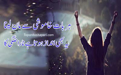 Love True Shayari in Urdu