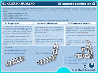 http://www.educa.jcyl.es/educacyl/cm/gallery/Recursos%20Boecillo/CUERPO%20HUMANO/index.html