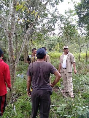 Kadis LH Datang, Hutan Kotapun Terang