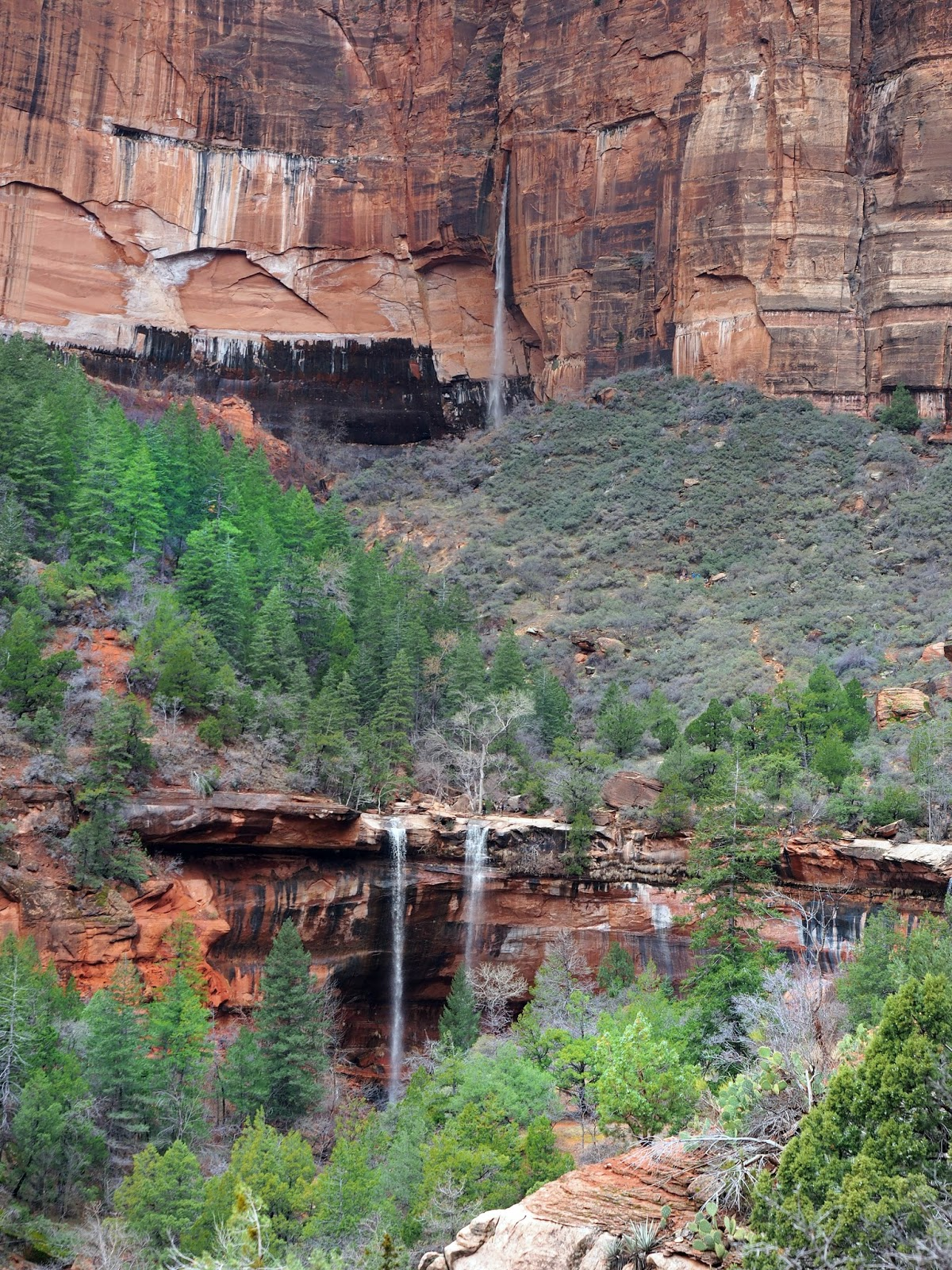 Zion Emerald Pools Kids