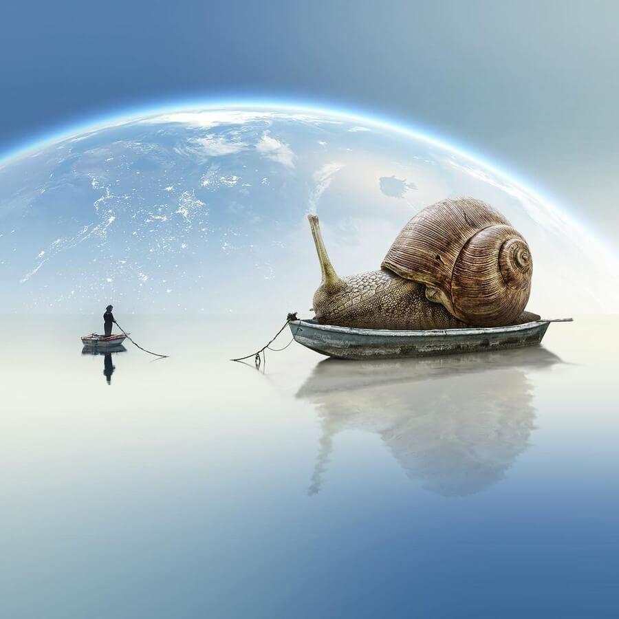 02-A-snail-on-a-gentle-ride-Marcio-Sa-www-designstack-co