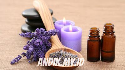 lavender, minyak lavender, lavender essential oil,