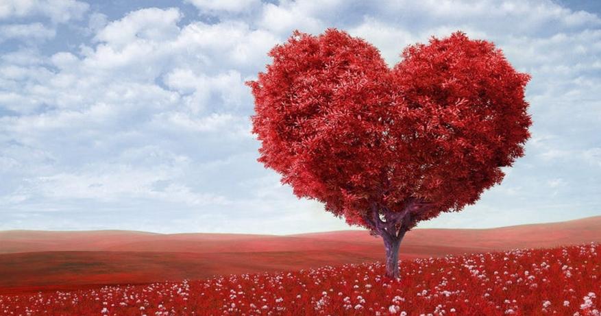 19 Kata Kata Mutiara Cinta Romantis Bahasa Inggris Beserta