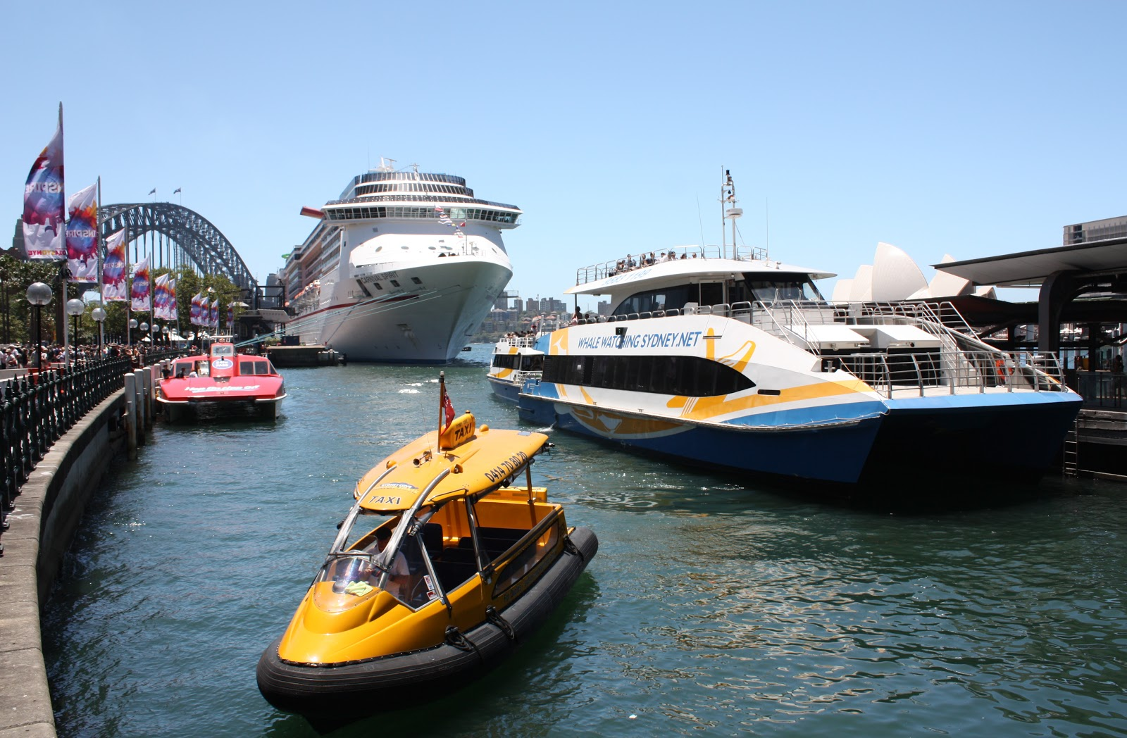 Sydney City And Suburbs Circular Quay Boats