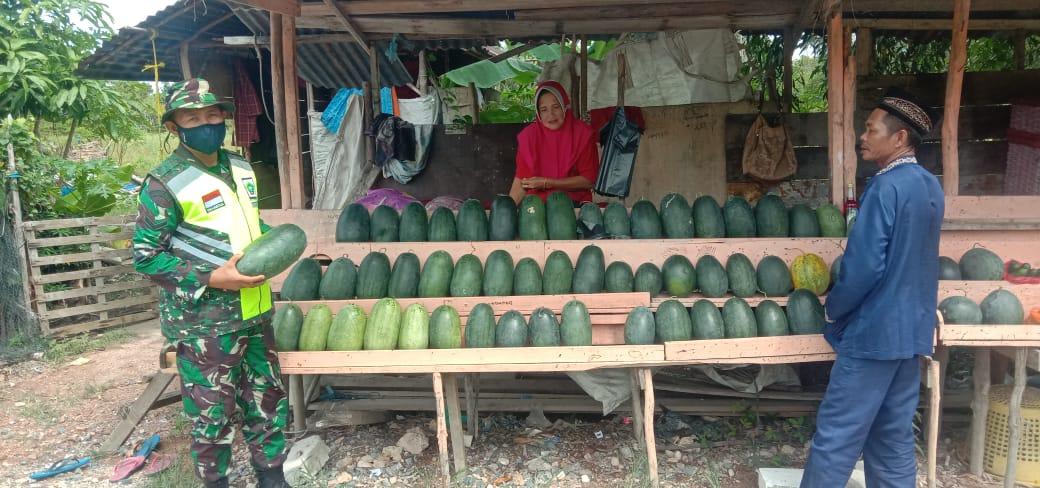 Babinsa Desa Cemaga Selatan Didampingi Kepala Desa Lakukan Komsos Dengan Seorang Ibu Petani Semangka