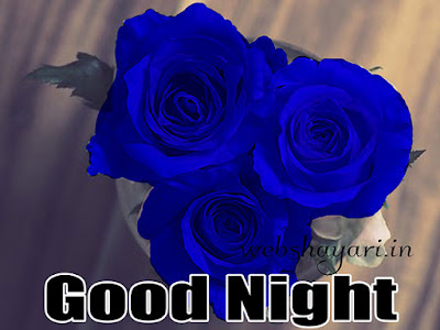 beautiful rose good night hd photo sticker