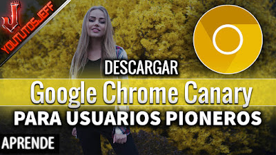 Descargar Google Chrome Canary Español