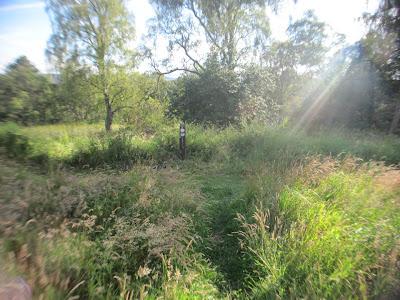 Go right to reach Loch Kinord