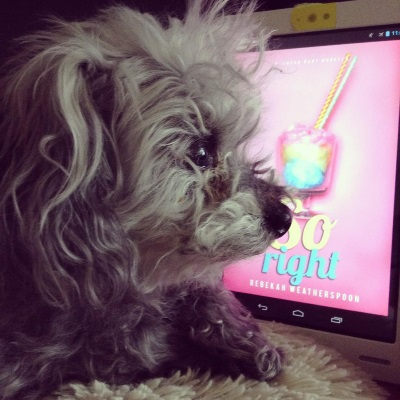 A fuzzy grey poodle, Murchie, lays in profile with his paws loose in front of him. Behind him is a white Kobo with So Right's pink cover on its screen. The cover features a stemmed glass filled with blue, yellow, and pink cotton candy.