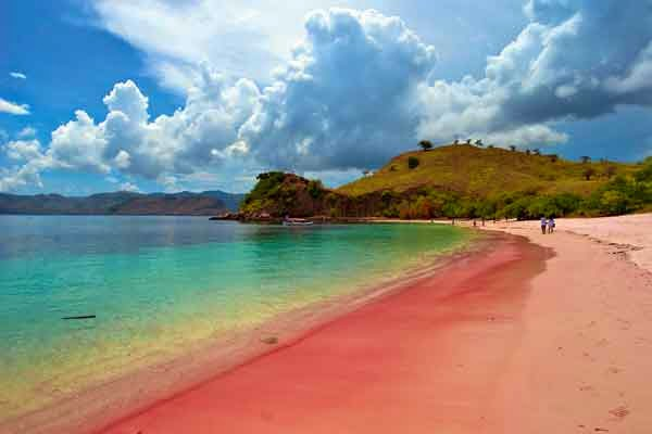 Pantai Pink Beach, Manggarai, NTT