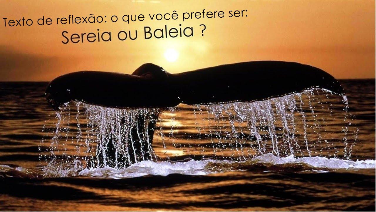 Texto de reflexão o que você prefere ser sereia ou baleia