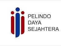 Lowongan Kerja PT Pelindo Daya Sejahtera - Penerimaan Pegawai (SMA/SMK,D3,S1) Agustus 2020