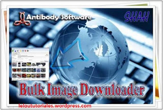 Bulk Image Downloader v4.91 + Crack [Full] [MEGA]