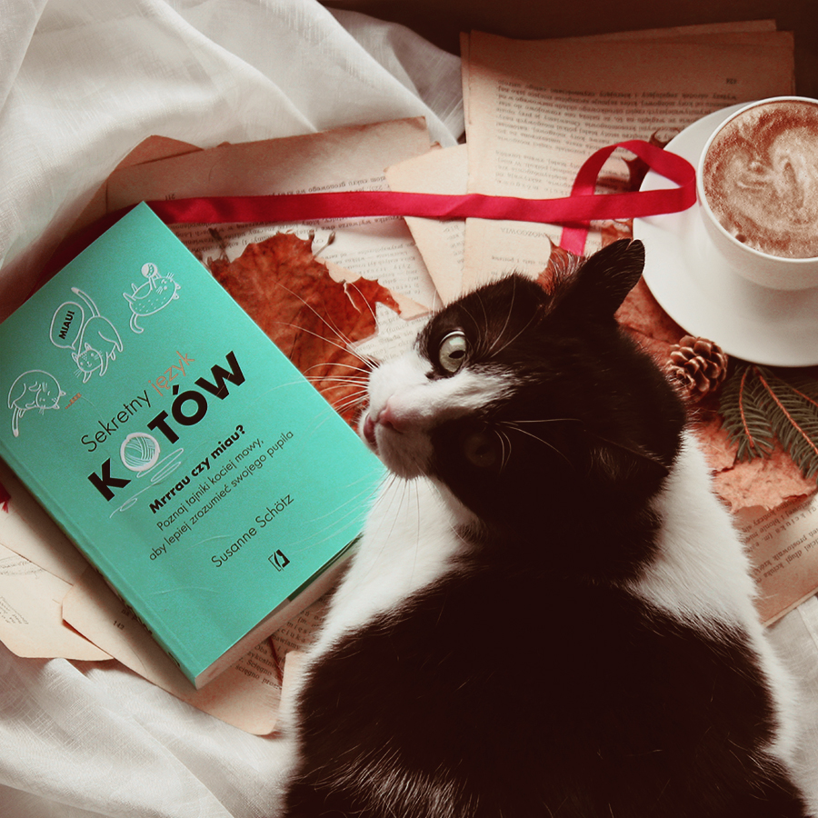#129 Sekretny język kotów - Susanne Schötz - recenzja - czy warto przeczytać?