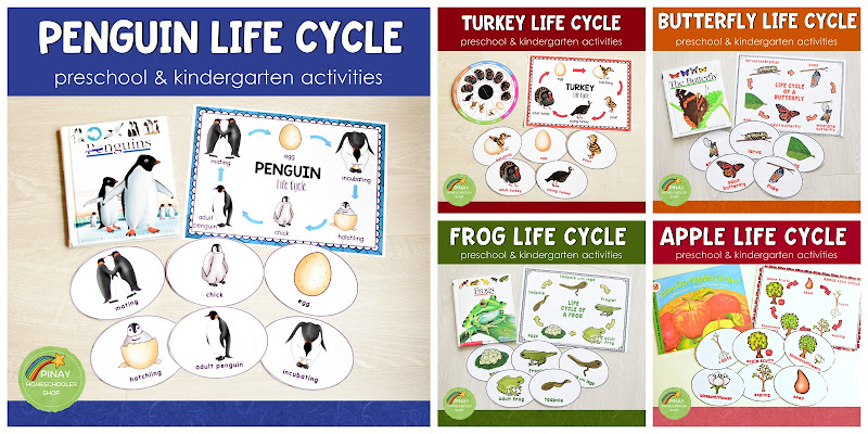 Life Cycle Learning Materials