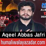 https://aliwalayazadar.blogspot.com/2020/08/aqeel-abbas-jafri-nohay-2021.html