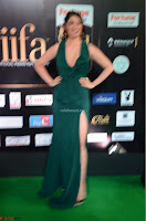 Laxmi Rai in a Deep neck Beautiful Green Gown Cute Actress Laxmi Rai ~  041.JPG