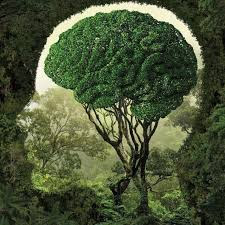 Alam dan Manusia: Manifestasi Sang Maha