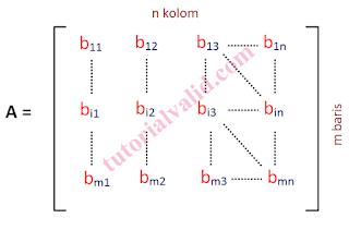 Matriks m x n