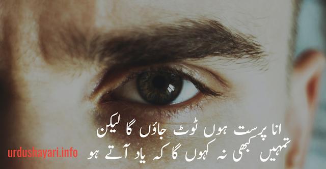 Best Urdu Attitude Shayari  - 2 line urdu poetry image