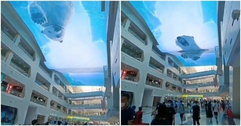 Impresionante techo de un centro comercial