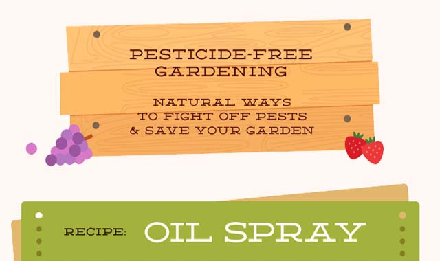 Pesticide-Free Gardening Natural Ways to Fight Off Pests and Save Your Garden #infographic