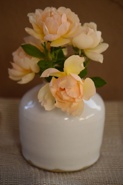 "rose ""Wollerton Old Hall"", amy myers ceramics, Monday vase meme, small sunny garden, desert garden, amy myers photography"