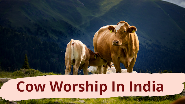 Why Hindus Don't Eat Beef And Practice Cow Worship