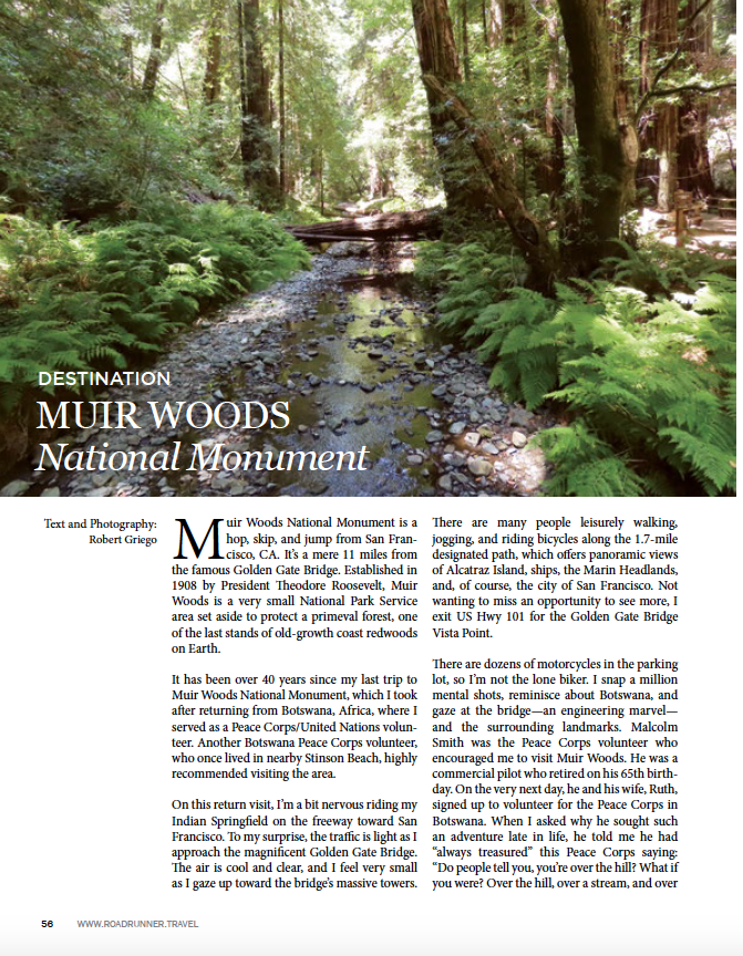 ~ Muir Woods National Monument ~