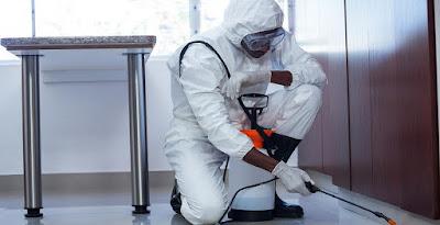 شركة رش مبيدات و مكافحة حشرات بالمجمعة