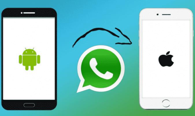 Cara Mudah Pindahkan Riwayat Chat WhatsApp dari Android ke iOS
