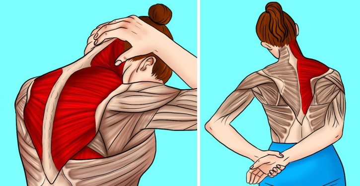 10 Stretches To Relieve Tension In The Neck And Shoulders.