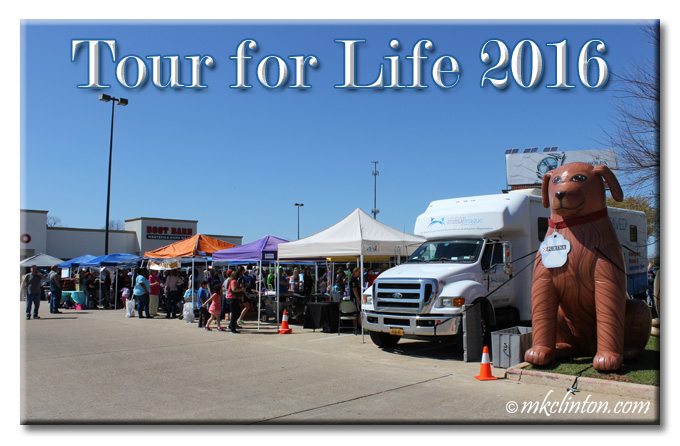 North Shore Animal League's Tour for Life 2016 pet adoption event