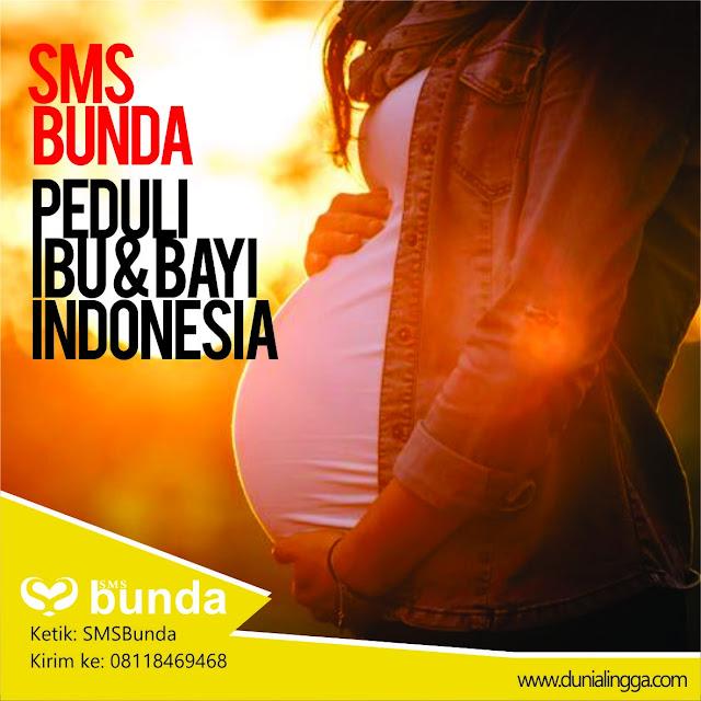 smsbunda peduli ibu dan bayi indonesia