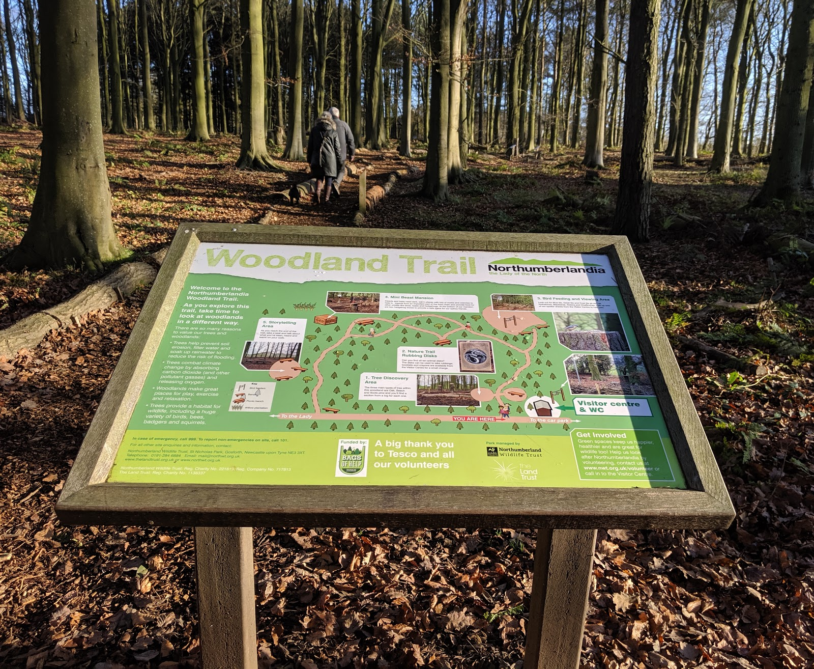 A Guide to Visiting Northumberlandia - woodland walk map