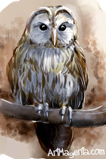 Tawny Owl is a bird sketch by ArtMagenta.com