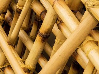 agar-bambu-lebih-kuat.jpg