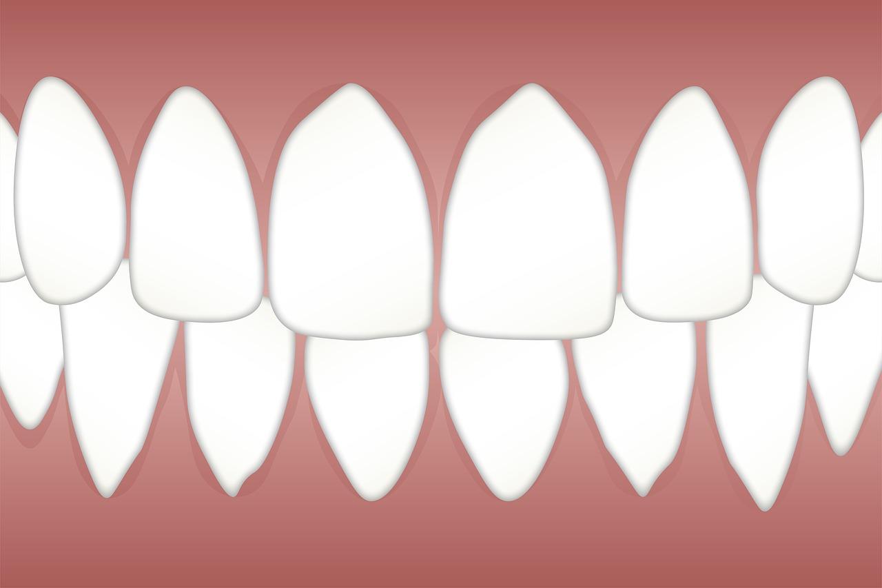 North Island Dental Arts
