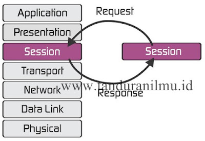Pengertian Layer Session Pada Model OSI dan Protokol Implementasinya