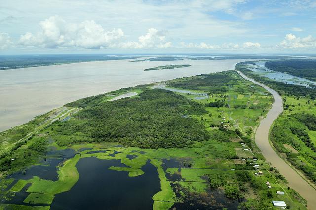 Where dose the amazon River ends, Amazon River, Facts, River,Amazon, jungle, wildlife,