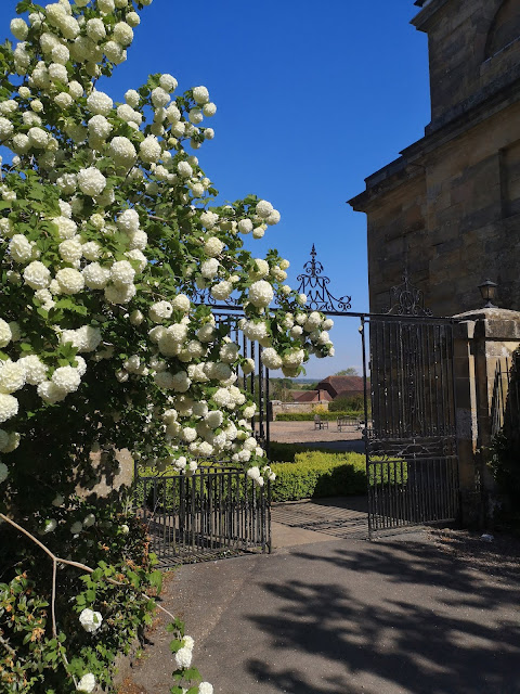 Beautiul gates and spring flowers