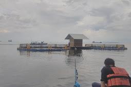 Rumah Apung Bangsring Banyuwangi Pesona Underwater