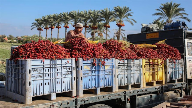 Autoridad Palestina boicotea la importación de productos israelíes