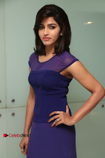 Tamil Actress Dhansika Stills in Purple Long Dress at Simba Audio Launch  0003.jpg