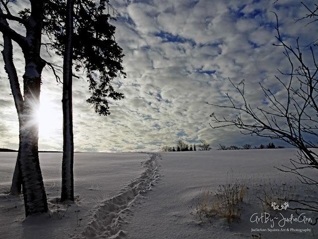 ArtByJudieAnn Snowdrifts & Sunbeams