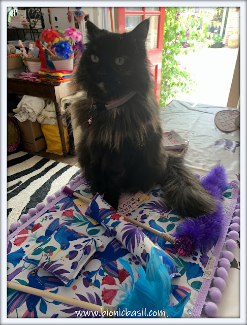 A Cat-Formation Post Featuring Pandora ©BionicBasil® Packing A BBHQ Giveaway Goodie Box