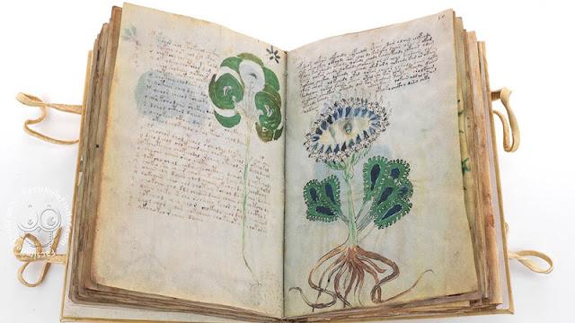 600 Yıldır Sır Gibi Saklanan Voynich El Yazmasının Sırrı Çözüldü