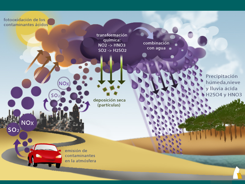 ¿Qué es la lluvia ácida? POR QUÉ CÓMO Y DÓNDE