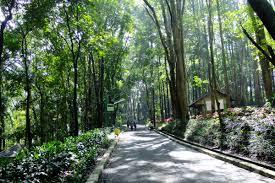 6 Obyek wisata di Depok yang cukup seru dan layak untuk dikunjungi bahkan ada wisata religi terbesar di Asia tenggara.