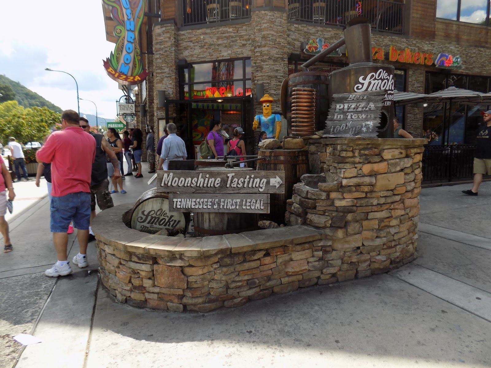 Our Family Travel Blog Pigeon Forge Dollywood Great